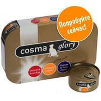 Cosma Glory в желе - Смешанная пробная упаковка